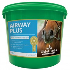 Global Herbs Airways Plus Powder 1kg