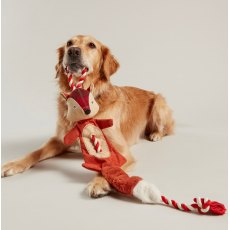 JOULES DOG TOY Fox