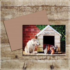 Kitchy & Co Greetings Card In the dog house