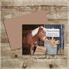 Kitchy & Co Greetings Card Crunchy Carrots