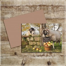 Kitchy & Co Greetings Card Scrumping Apples