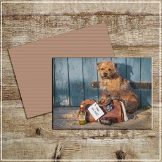 Kitchy & Co Greetings Card Vet on call