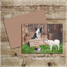 Kitchy & Co Greetings Card Sheepdog training
