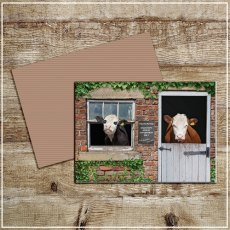 Kitchy & Co Greetings Card Free samples welcome