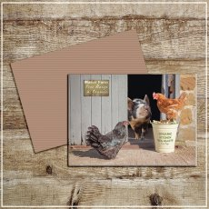 Kitchy & Co Greetings Card Manour Farm