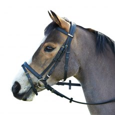 WINTEC BRIDLE WITH FLASH BLACK