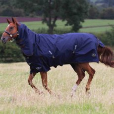 Gallop 450 Heavy Combo Turnout Rug