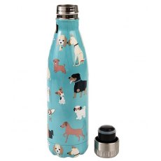 Elico Stainless Steel Bottle Best in Show