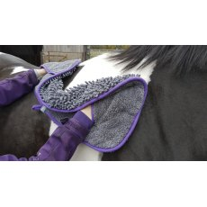 Henry Wag Equine Microfibre/Noodle Glove Towel Large