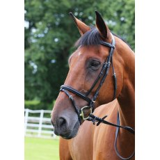 Gallop Economy  Bridle with Flash