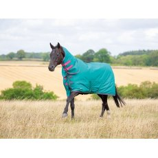 Shires Tempest Original 100 Combo Turnout Green/Pink