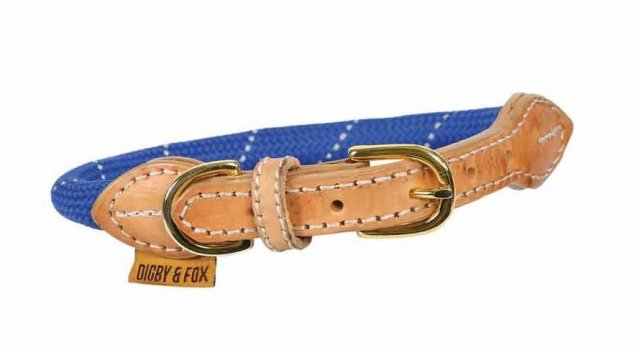 Shires Equestrian Shires Digby & Fox Reflective Dog Collar