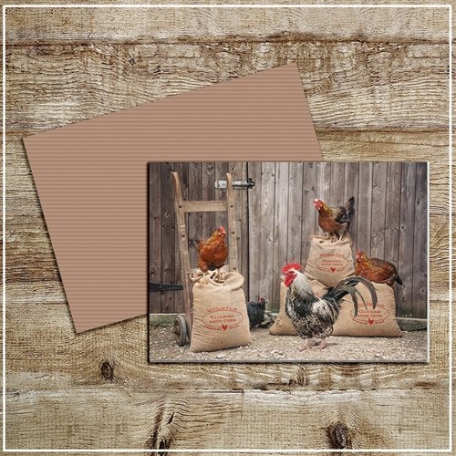 Kitchy & Co  Kitchy & Co Greetings Card Improved blend Clucking good corn