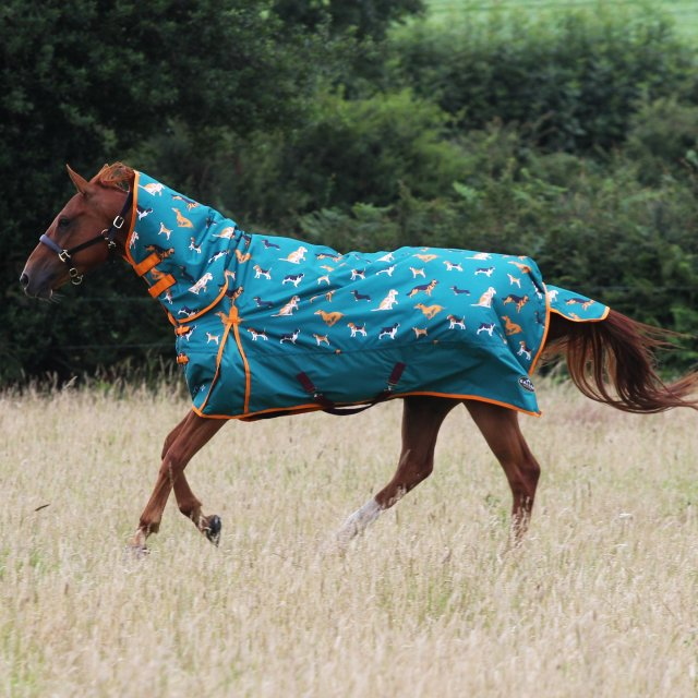 Gallop Gallop Trojan 200 Combo Dogs Print Turnout Rug