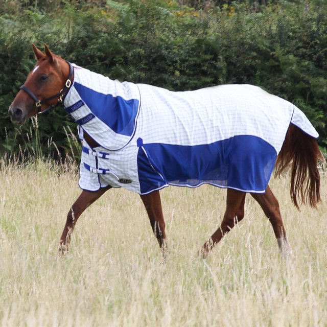 Gallop Gallop Air-Mesh Summer Sheet