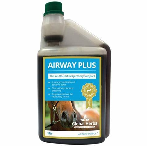 Global Herbs Global Herbs Airways Plus Liquid 1ltr