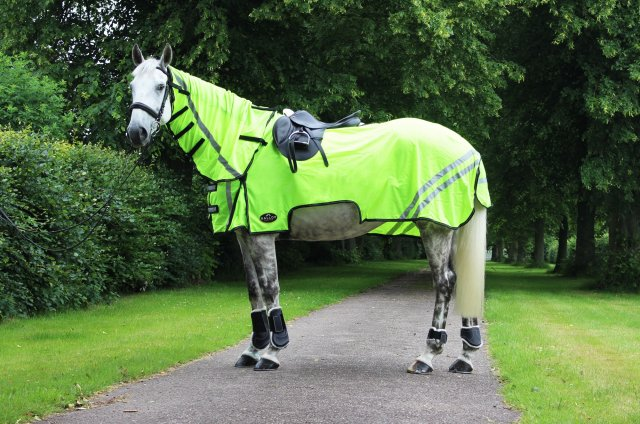 Gallop Gallop Ride-On Fly Rug Combo