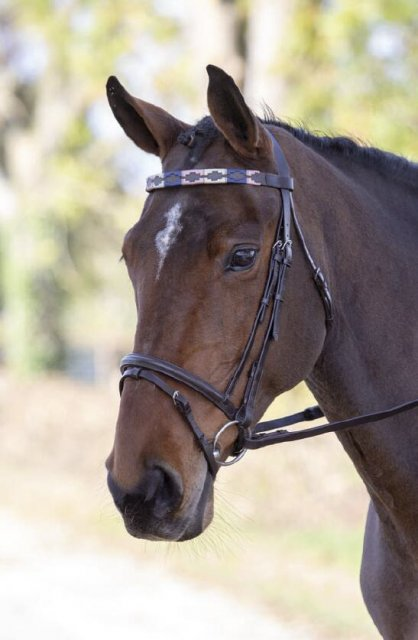 Shires Equestrian Shires Blenheim Leather Polo Browband